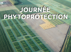 Journée phytoprotection 2016