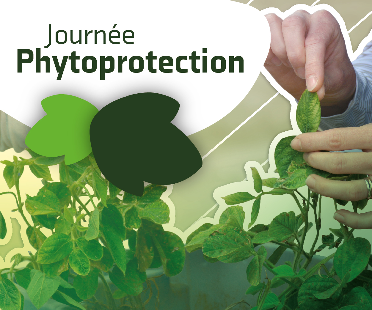 Journée phytoprotection 2019