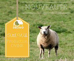 DECISIO : Outil Web en production ovine