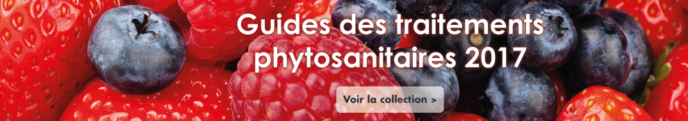 Guides traitements phytosanitaires
