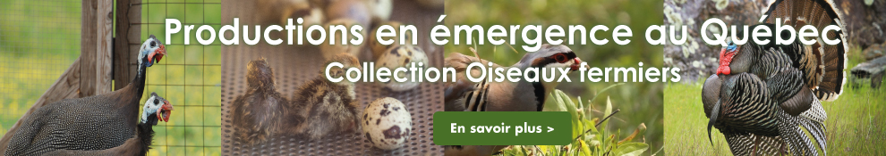 Collection Oiseaux fermiers