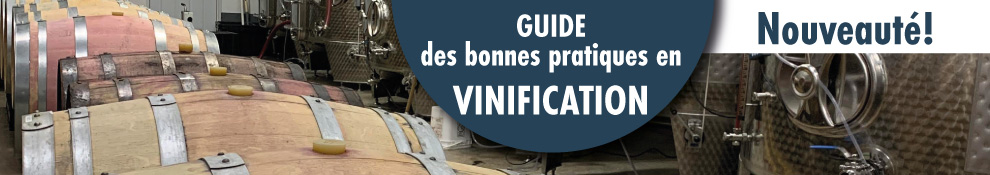 guide-vinification