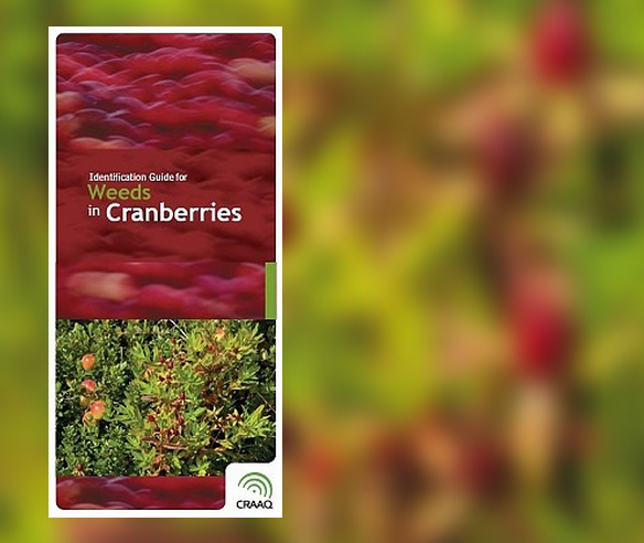 Identification Guide for Weeds in Cranberry