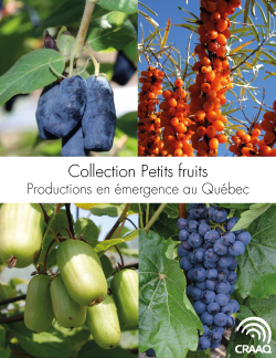 Collection Petits fruits - Productions en émergence au Québec