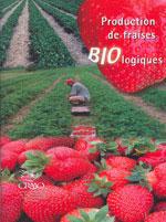 Production de fraises biologiques