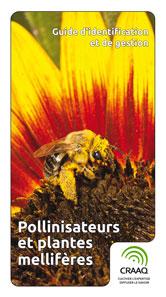 Guide d'identification et de gestion - Pollinisateurs et plantes mellifères