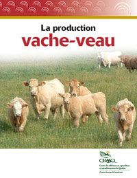 La production vache-veau