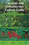 Currants and gooseberries culture guide