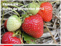 Fraisier : Guide de protection 2012