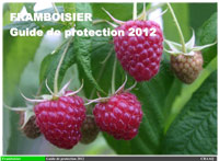 Framboisier : Guide de protection 2012