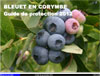 Bleuet en corymbe : Guide de protection 2012
