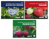 Collection Petits fruits : Traitements phytosanitaires 2020 (PDF)